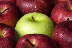 apple food facts page picture of red apples with green