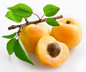 apricot facts picture of whole apricot and apricot cut in half
