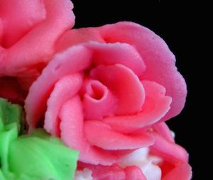 frosting rose