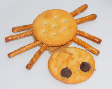 cracker spider