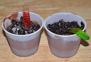 dirt cup