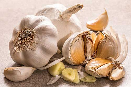 garlic food facts photo of garlic bulb and garlic cloves