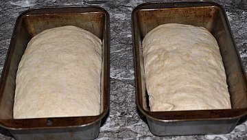 bread loaves ready
