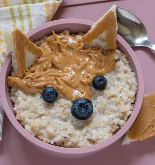 oats fox