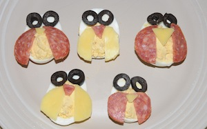 owl eggs