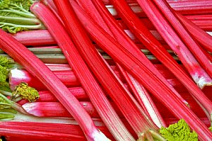 rhubarb food facts