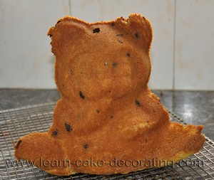 bear stand up cake baked