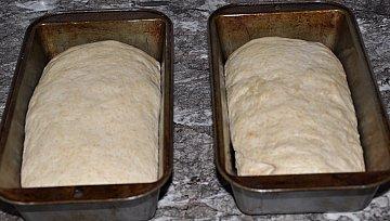 loaves ready