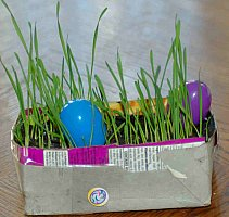 homemade real grass easter basket
