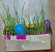 homemade real grass easter basket