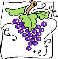 purple grapes graphic