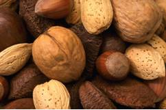 nut facts picture of mixed nuts, including walnut, almond,