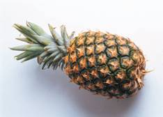 pineapple food facts, picture of whole pineapple