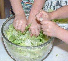 tearing lettuce