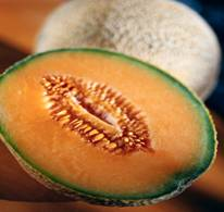 melon facts picture of cantelope cut in half