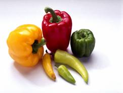 pepper food facts, picture of variety of peppers including red pepper, yellow pepper, green pepper and hot peppers